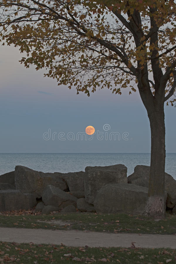 Supermoon que aumenta sobre o Lago Michigan, vertical imagem de stock royalty free