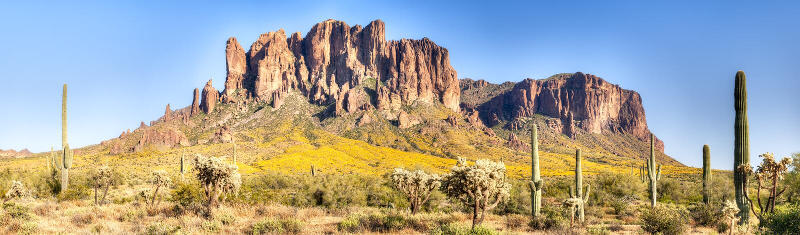 Superstition Mountains. Blooming brittlebush in Superstition Wilderness stock photos