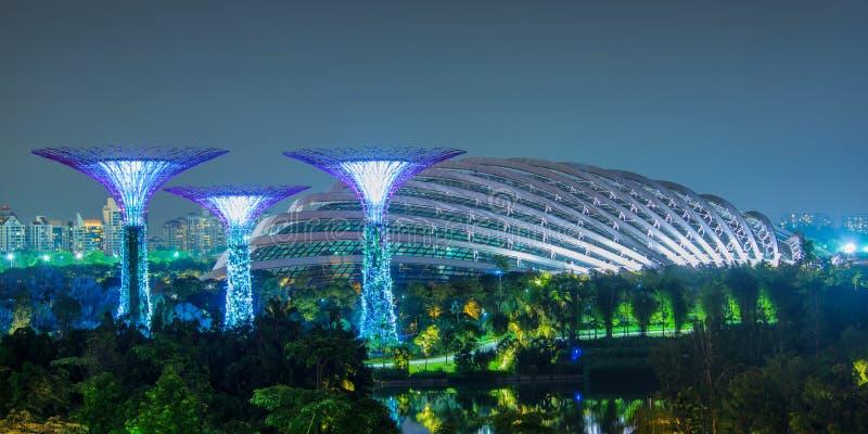 Supertree dunge och ett växthus på natten, Singapore arkivfoto