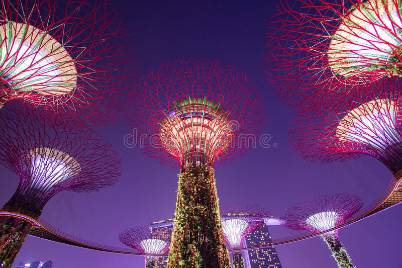 Download Supertree Garden At Night, Garden By The Bay Stock Image   Image  Of Sculpture