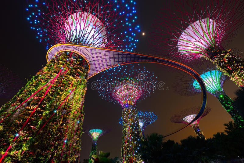 download supertree garden at night garden by the bay in singapore stock photo image