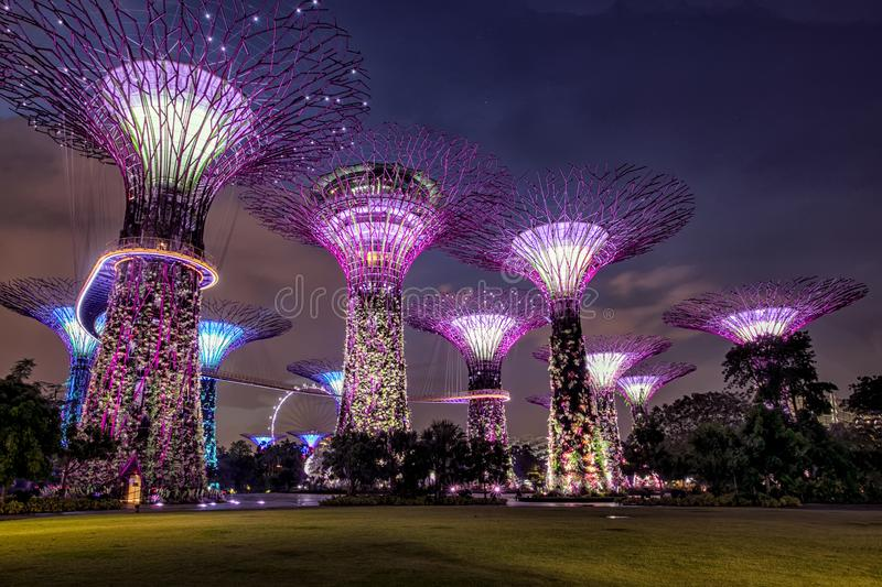 Amazing Supertree Grove With Beautiful Park at the Night. royalty free stock photography