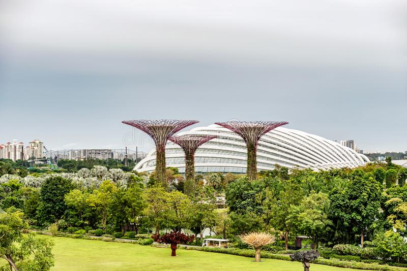 Supertrees, Supertree Grove at Gardens by the Bay in Singapore. Supertree Grove, Unique vertical gardens resembling towering trees, with canopies and colorful royalty free stock photo