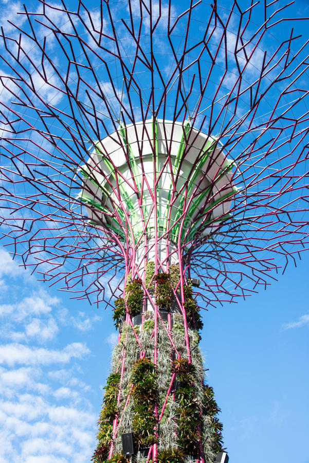 Download Supertree Structure stock photo. Image of design, structural - 25800100