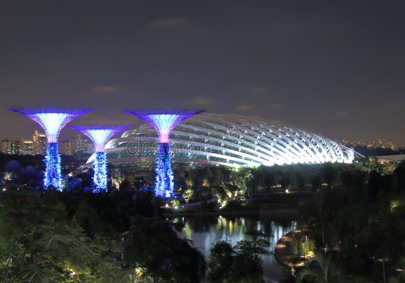 Supertreebosje en Bloem Dorm Singapore royalty-vrije stock afbeelding