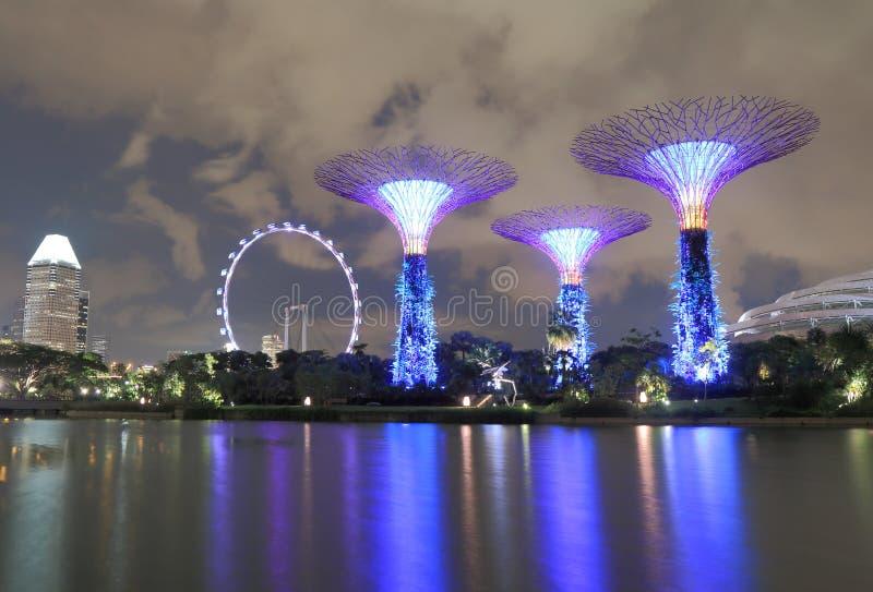 Supertreebosje en de Vlieger van Singapore royalty-vrije stock foto's