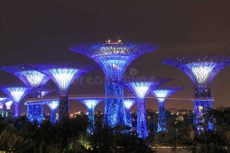 Supertreebosje Singapore stock foto