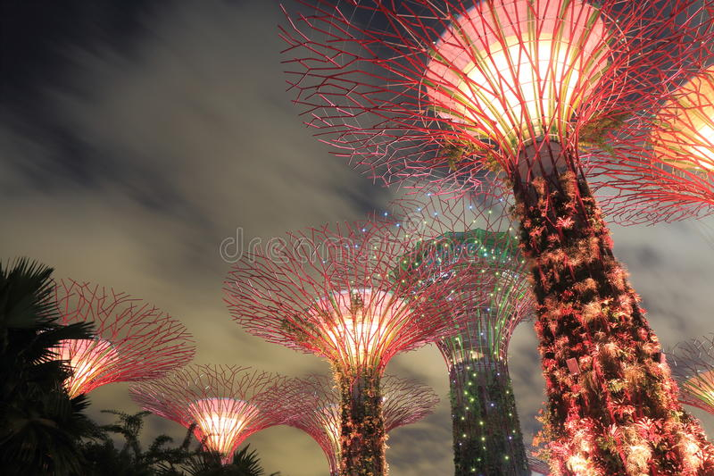Supertreebosje Singapore royalty-vrije stock afbeelding