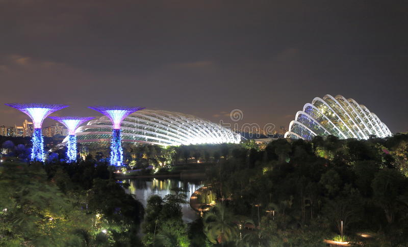 Supertreebosje, Wolkenbos en Bloem Dorm Singapore royalty-vrije stock foto's