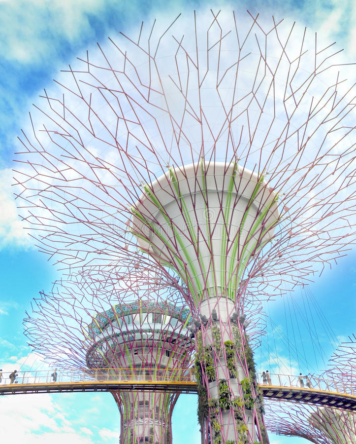 Download Supertrees Between Bridge At Gardens By The Bay Editorial Stock Photo - Image: 25988783