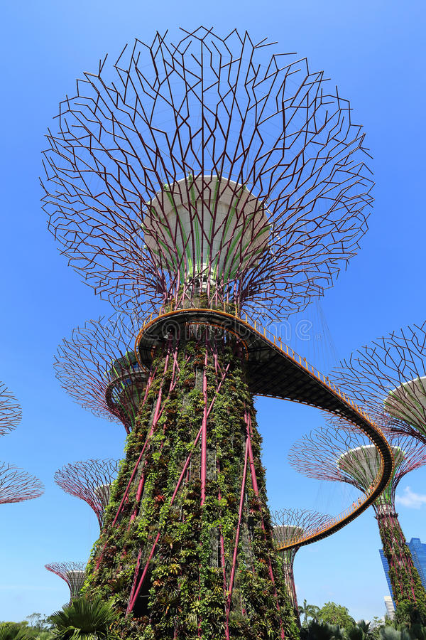 Download The Supertrees Grove At Gardens By The Bay Editorial Image - Image: 40878165