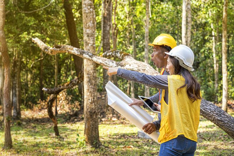 The supervisors are constructing roads in the forest. Young Engineer Male and female holding blueprint and tablet on hand. Engineer team working on project at royalty free stock images