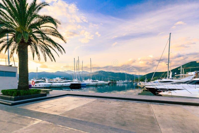 Superyachts in jachthaven Waterkant van Tivat, Montenegro royalty-vrije stock foto's