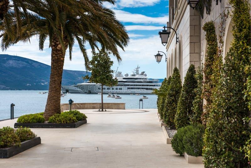 Superyachts på Porto Montenegro royaltyfria foton