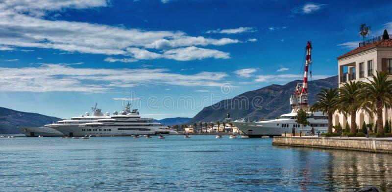 Superyachts på Porto Montenegro royaltyfria bilder
