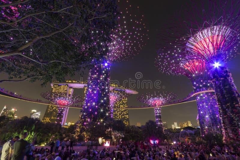 Supetreebosje en Marina Bay Sands bij nacht bij de Tuinen door de Baai in Singapore stock foto's
