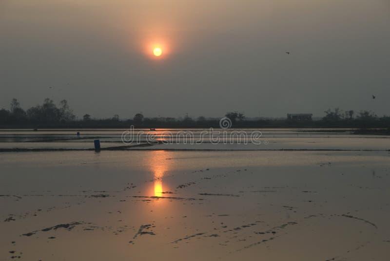 Suphanburi de Comfield de coucher du soleil en Thaïlande photos libres de droits