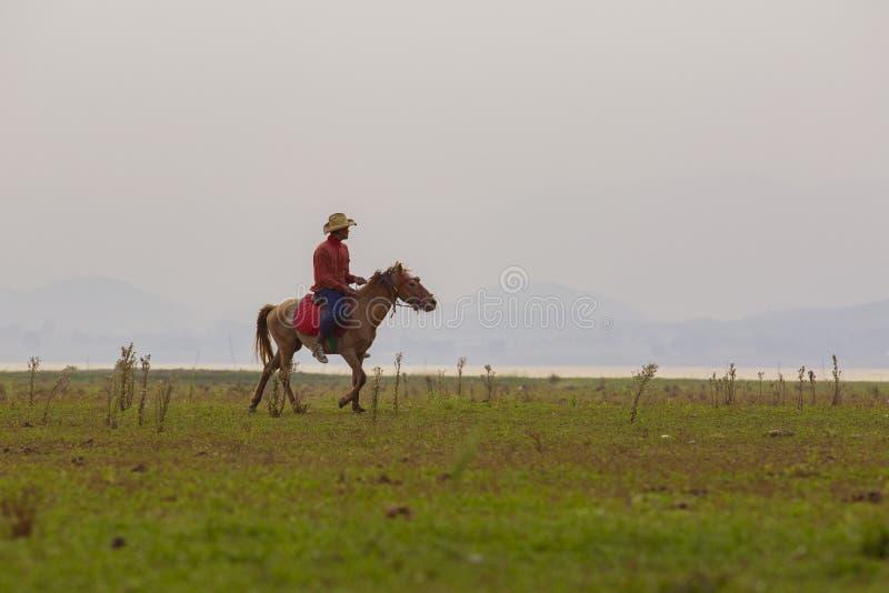 Suphanburi Tailandia - march6,2016: montar a caballo no identificado del hombre en el caballo detrás que corre a través del campo foto de archivo libre de regalías