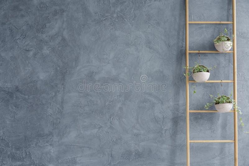 Suporte de flor de madeira da escada fotos de stock