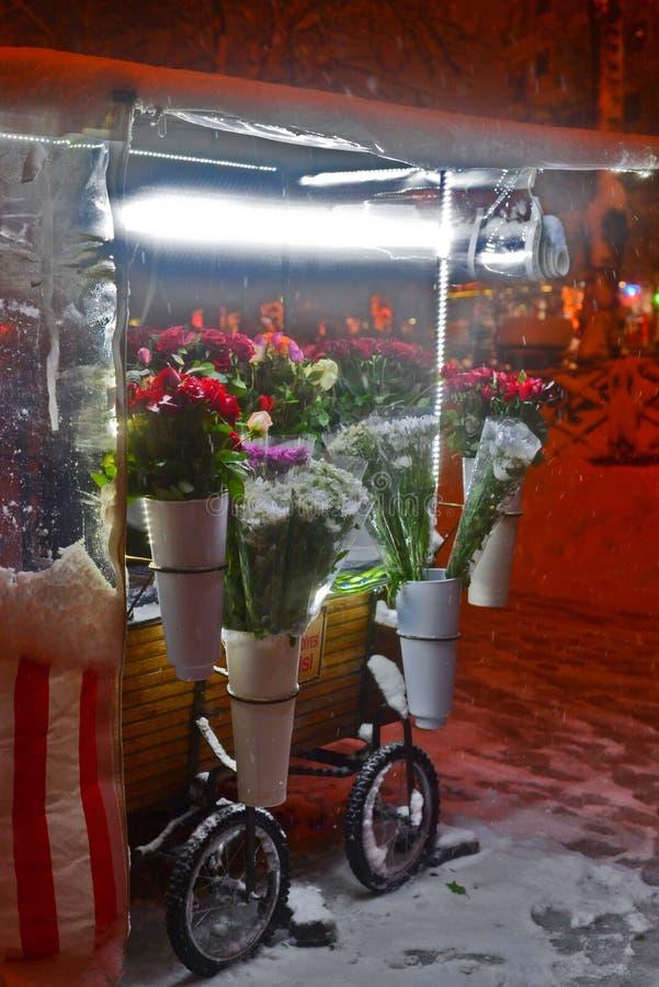 Suporte de flor na noite nevado fotos de stock