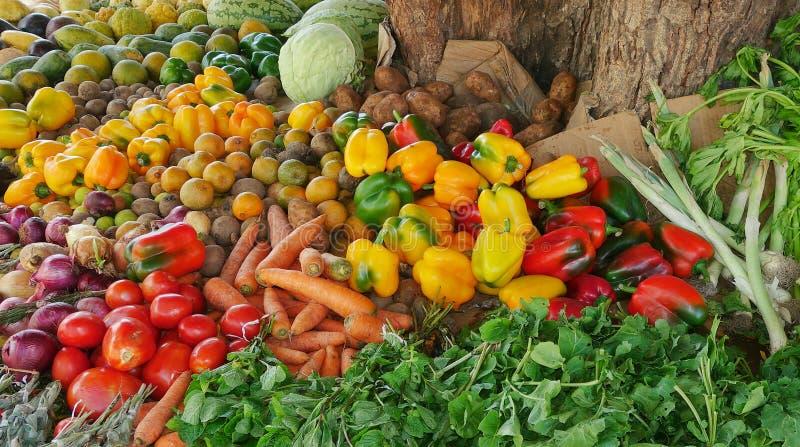 Suporte de frutos africano fotografia de stock royalty free