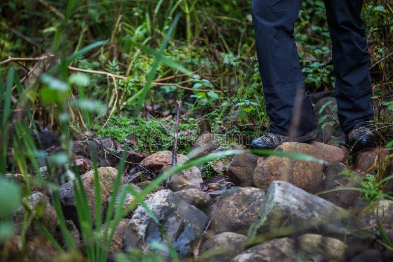 Suporte dos pés do caminhante do homem na rocha da montanha imagem de stock