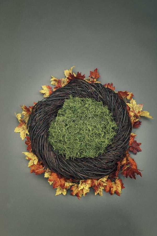 Suporte infantil da foto do fundo da fantasia do ninho com folhas da queda e m fotografia de stock