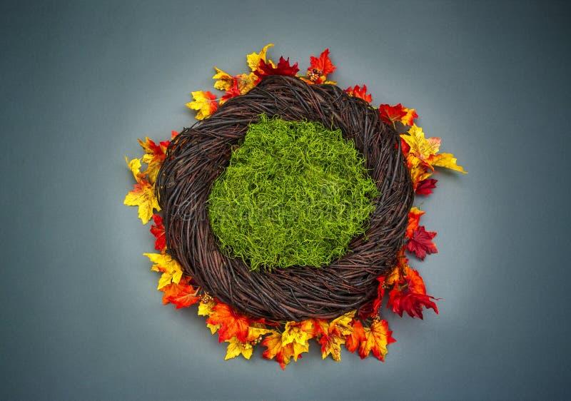 Suporte infantil da foto do fundo da fantasia do ninho com pasto colorido da queda imagem de stock royalty free