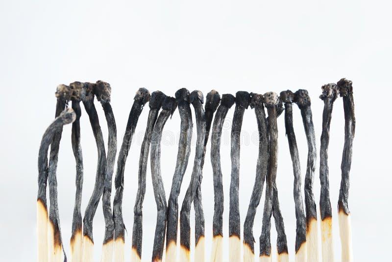 Suporte queimado de muitos fósforos em uma linha imagem de stock royalty free