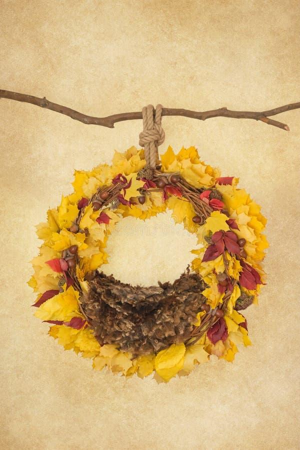 Suportes para fotografar os neonatos, anel do pendente em um ramo com bolotas, folhas amarelas e do vermelho e uma pele marrom em fotos de stock