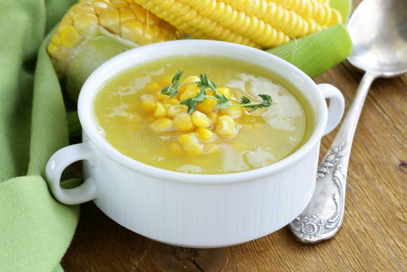 Suppe des frischen gelben Mais lizenzfreies stockbild