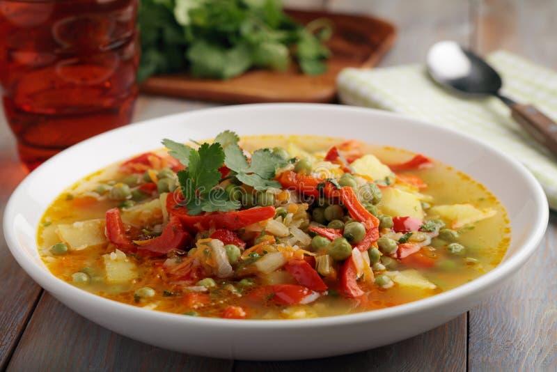 Suppe des strengen Vegetariers lizenzfreie stockbilder