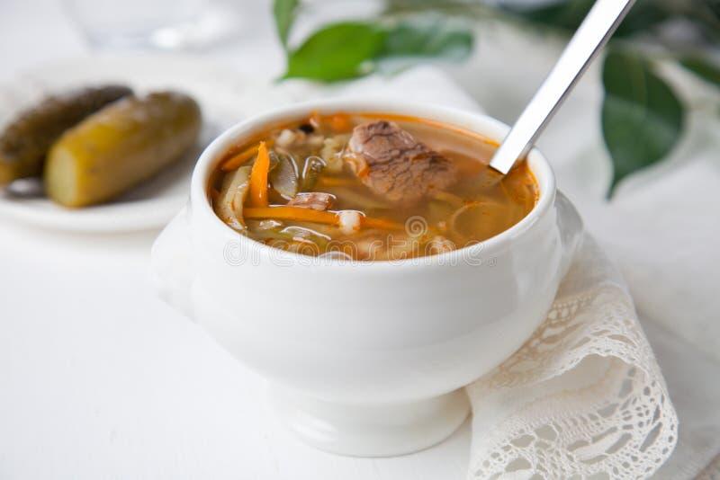 Suppe mit in Essig eingelegten Gurken (rassolnik) lizenzfreie stockfotos