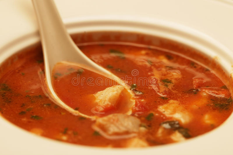 Suppe mit Fleisch und Gemüse lizenzfreies stockfoto