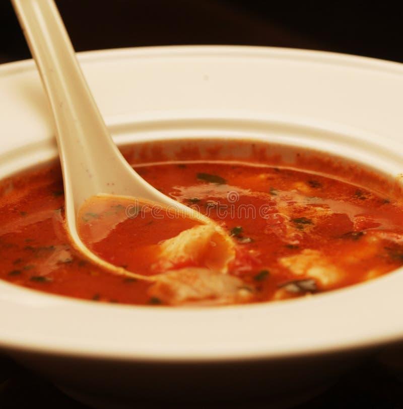 Suppe mit Fleisch und Gemüse lizenzfreies stockbild