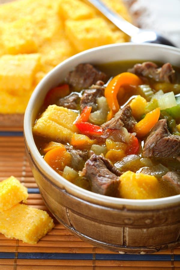 Suppe mit Gemüse und Fleisch stockbild