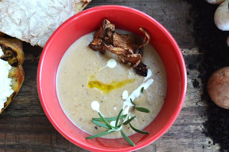 Suppe mit Pilzen lizenzfreie stockfotos