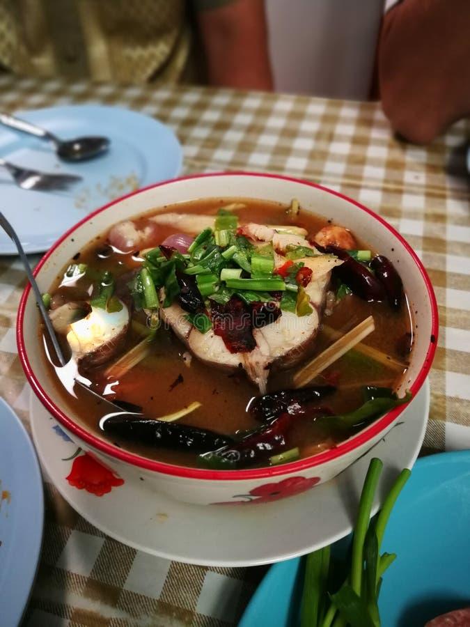 Suppe Tom-Yum würzige gekochte Schlangenhauptfische und Strohpilz herein lizenzfreie stockfotos