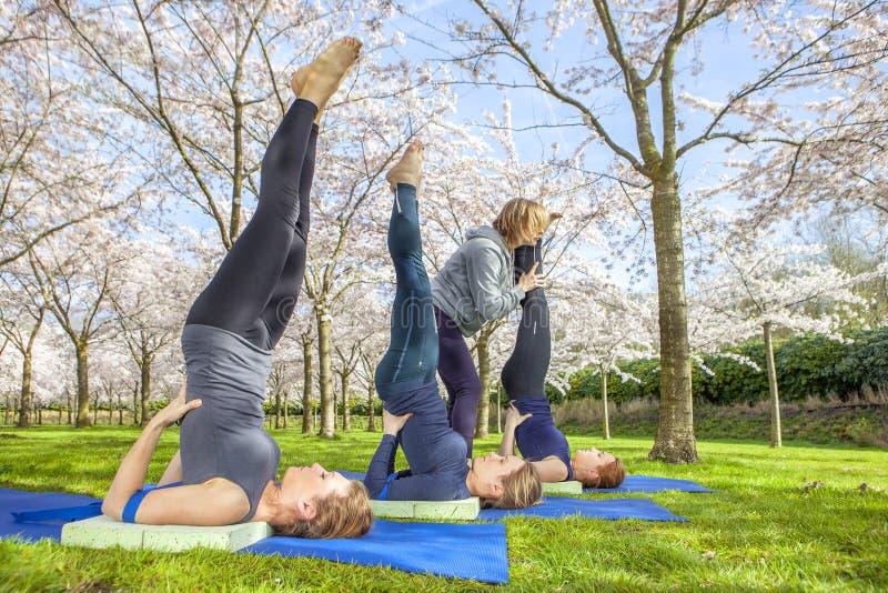 Support d'épaule pratiqué par le groupe de yoga photographie stock libre de droits