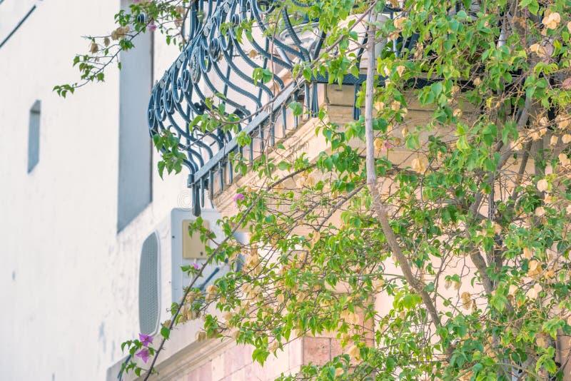 Support de boîte de fleur de fer travaillé de vintage sous la fenêtre image libre de droits