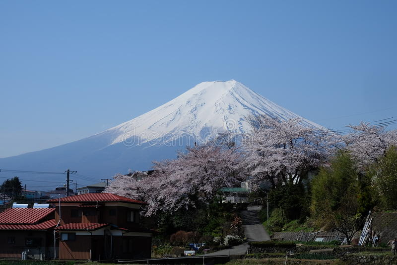 support Fuji, Fuji San image libre de droits