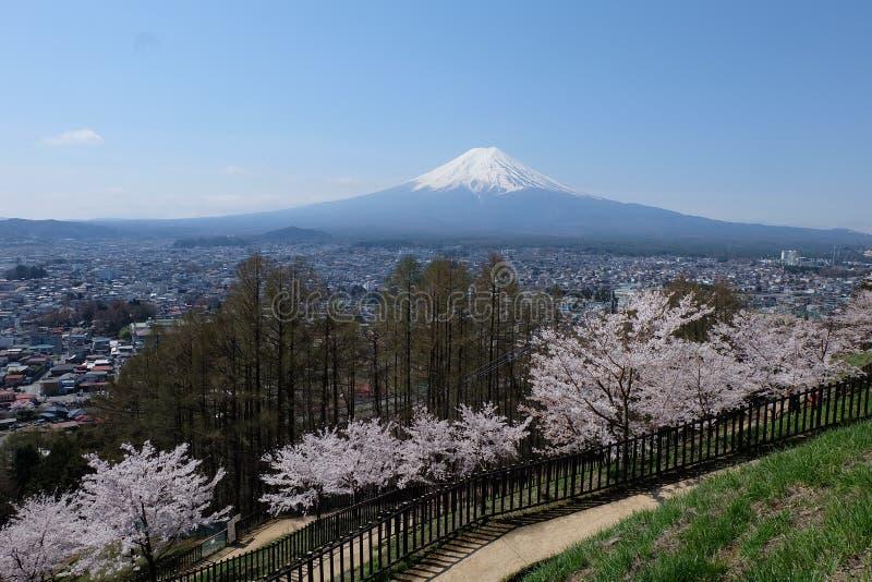 support Fuji, Fuji San photographie stock libre de droits