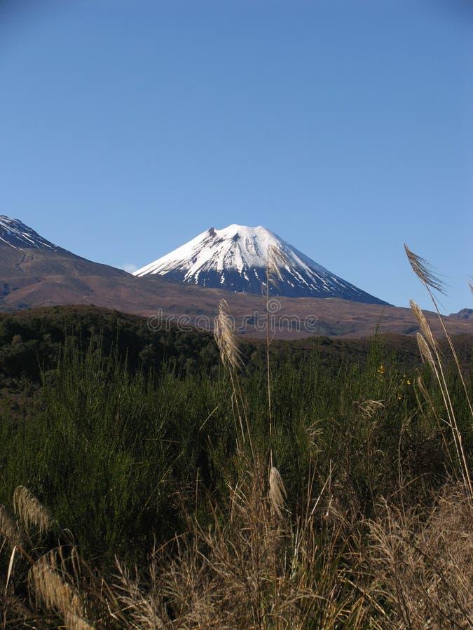 Support Ngauruhoe en Nouvelle Zélande image libre de droits