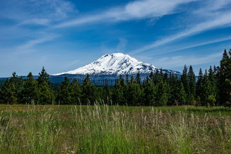 Supporto Adams, Stato del Washington immagini stock