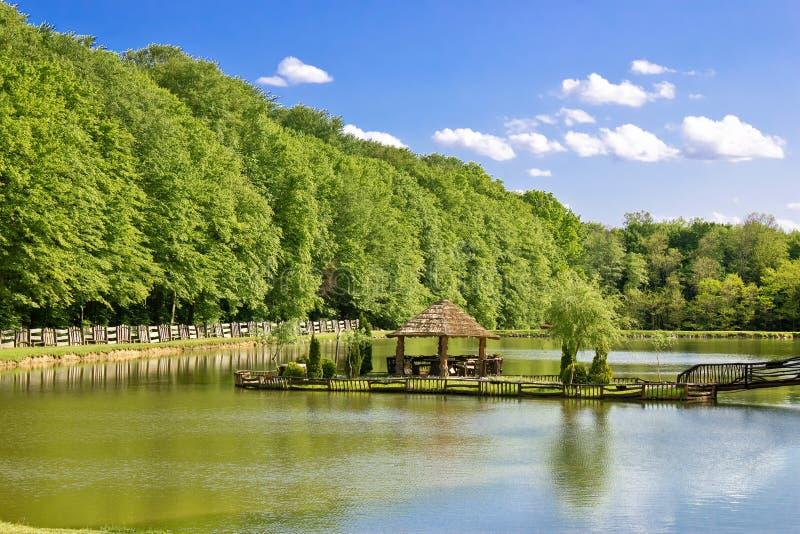Supporto conico di legno sul lago verde immagine stock