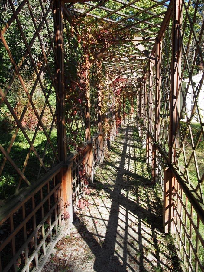 Supporto conico in un giardino fotografia stock libera da diritti