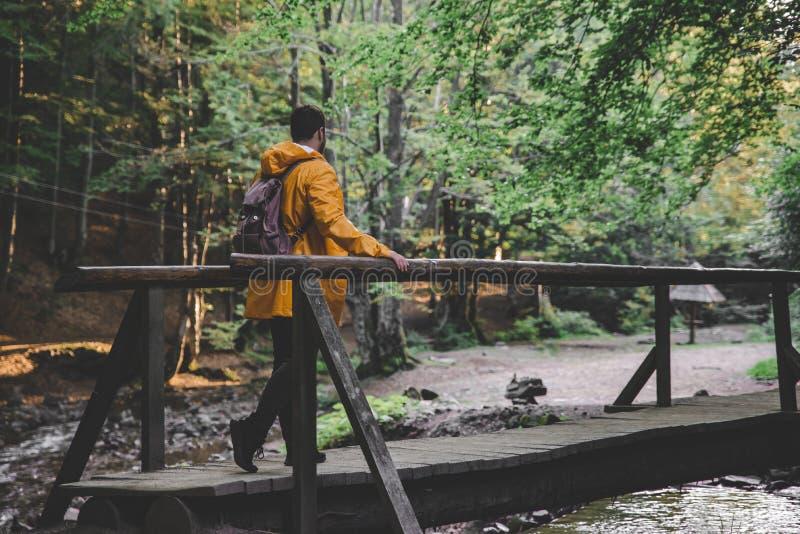 Supporto dell'uomo in mezzo alla foresta in impermeabile giallo immagini stock libere da diritti