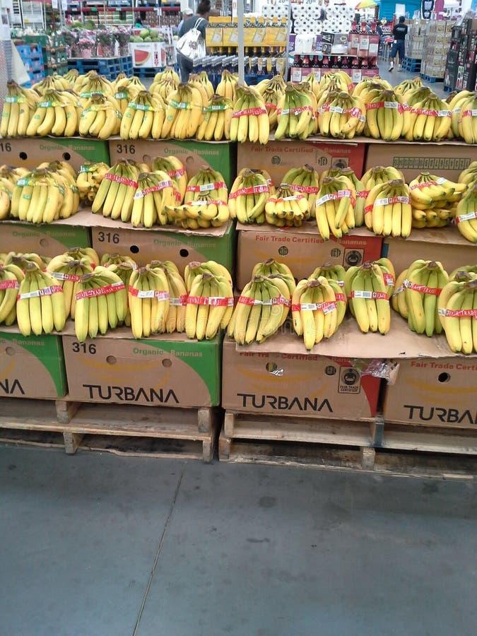 Supporto della banana fotografia stock libera da diritti