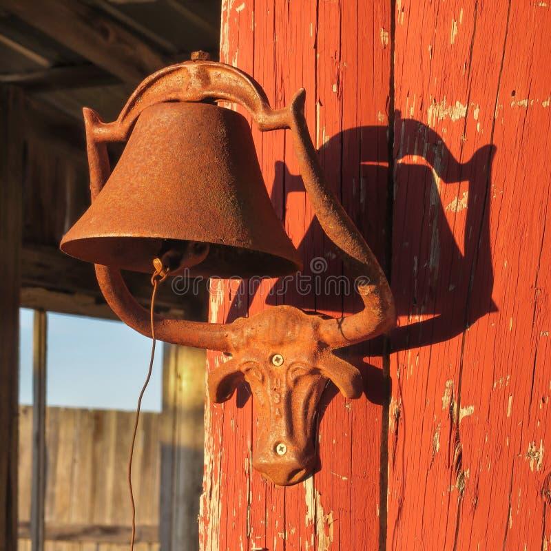 Supporto della campana del manzo della mucca texana fotografie stock libere da diritti