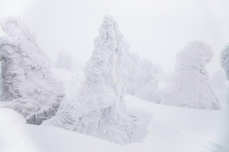 Supporto Hakkoda del mostro della neve nel tre innevato bianco del pino di inverno fotografia stock